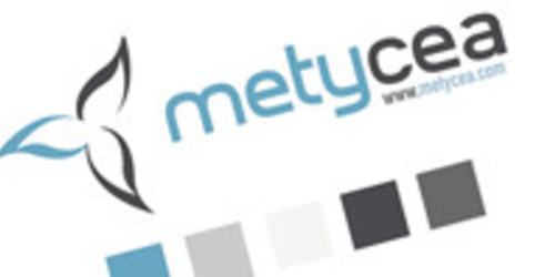 metycea experts de l'internet