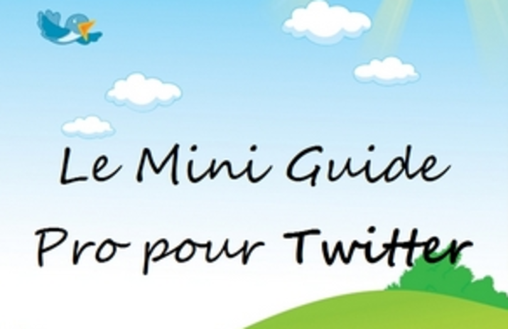 Twitter-ConseilsMarketing